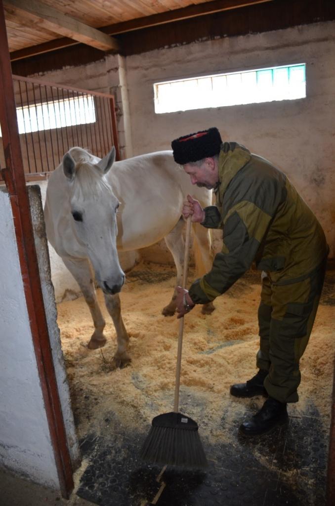 Серпуховские станичники провели необычный субботник